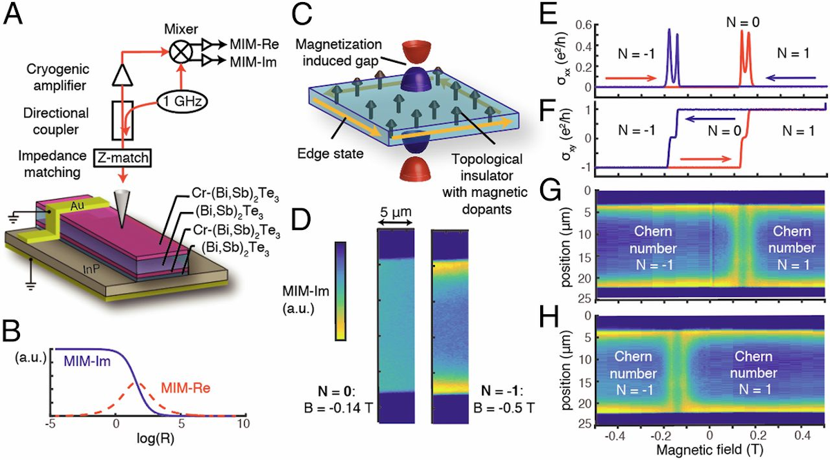 Imaging edge states in a magnetic topological insulator.