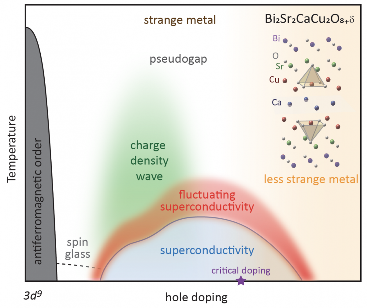 Phase diagram of the hole-doped cuprate superconductor Bi-2212